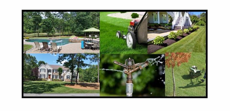 MVP Lawn & Landscape