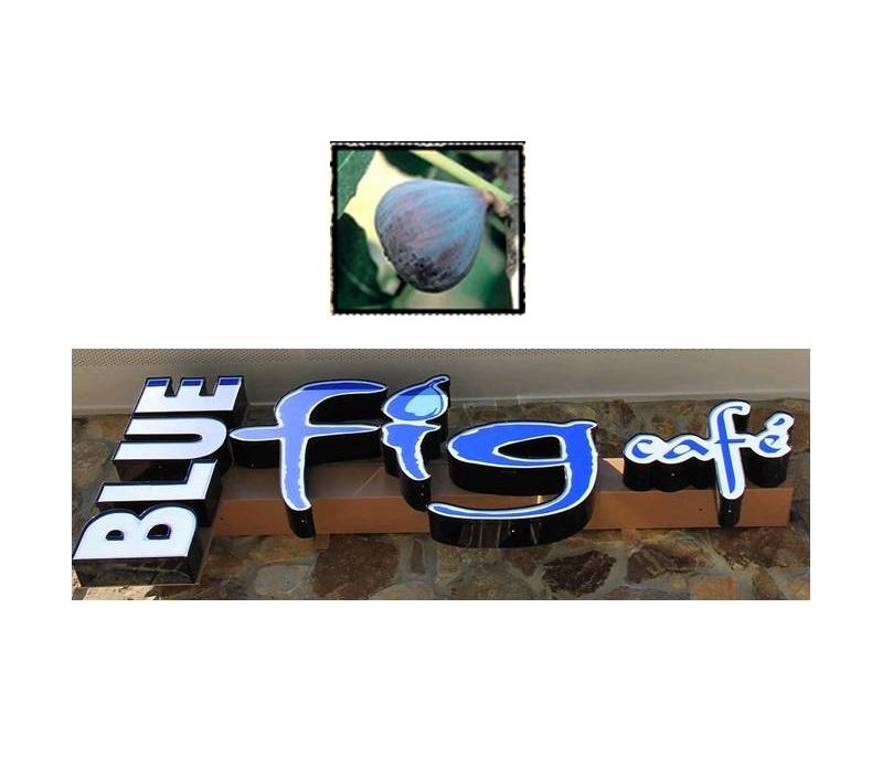 Blue Fig Cafe